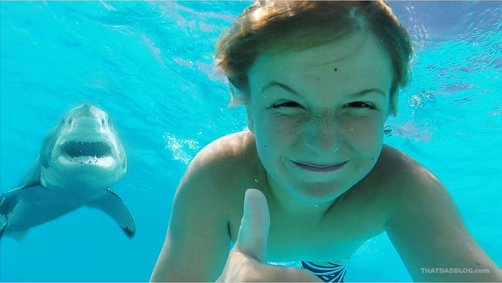 People swimming with sharks